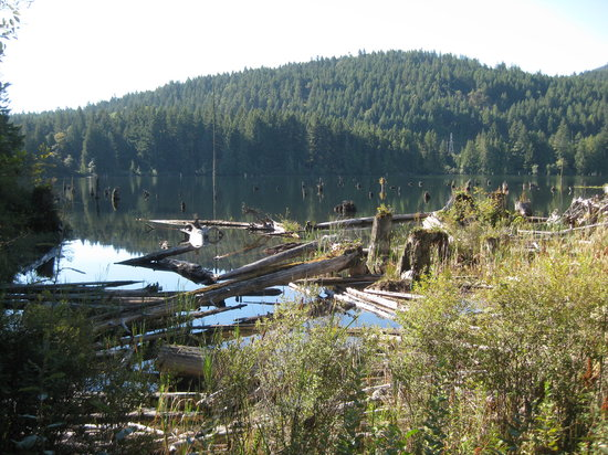 Nanaimo, Canadá: View from the trail.