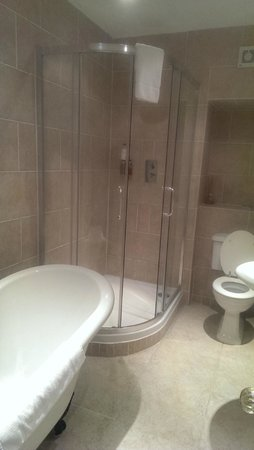 Apsley House Hotel: Shower