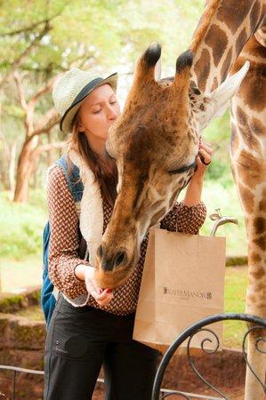 Giraffe Manor: Soooo close