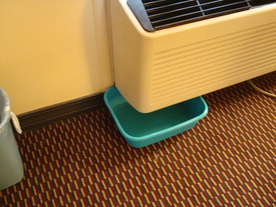 Americas Best Value Inn and Suites : leaky air conditioner
