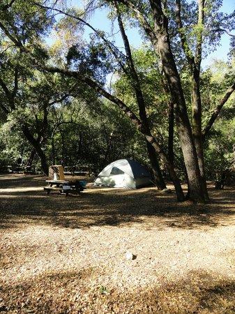 Uvas Canyon County Park: nice campground!