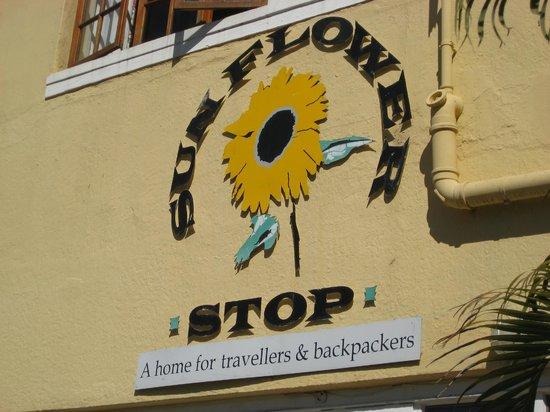 A Sunflower Stop: Logo