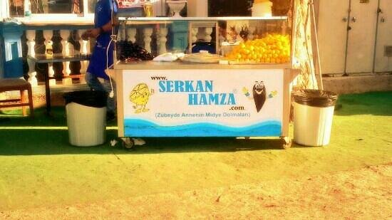 Picture Of Serkan & Hamza Midye