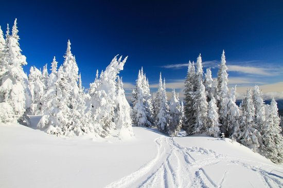 Sun Peaks Lodge: skiing resort