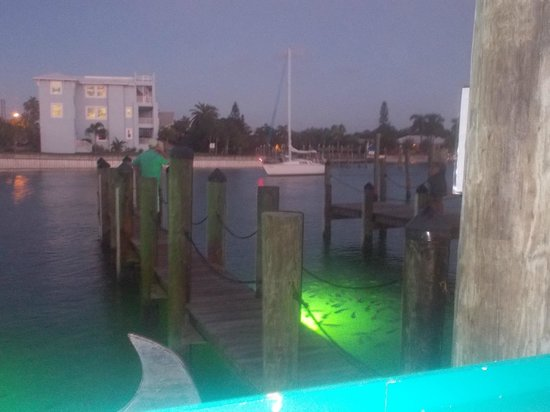 Sea Critters Cafe: View from our table