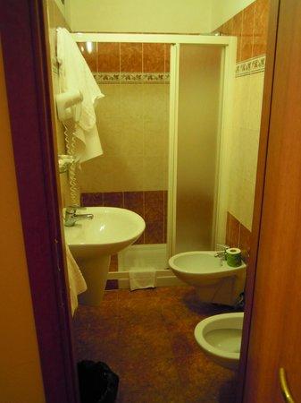 Hotel RomAntica: Bagno della camera