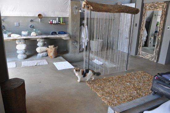 N/a'an ku se Lodge and Wildlife Sanctuary: nuestra habitación con un visitante ocasional