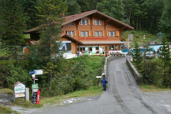 Gletscherschlucht: View further up the road
