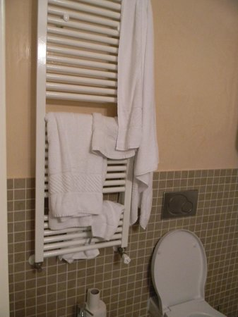 Hotel Trevi: No hooks for the towels meant we had to put them on the radiator