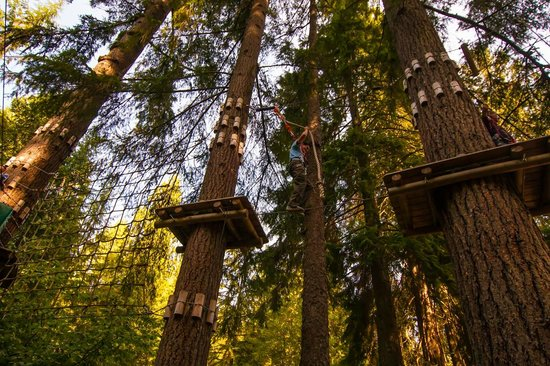 WildPlay Element Parks Maple Ridge : Going without hands really challenges your balance.