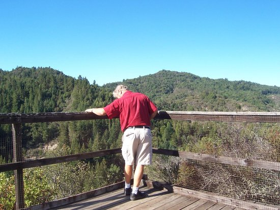 Mountain Home Ranch: At the Lookout