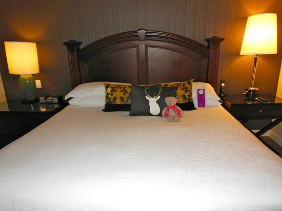 The Grand Hotel Minneapolis - a Kimpton Hotel: SnoozBoy relaxes on our comfy bed!