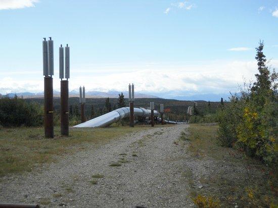 Alaskan Pipeline: Alaska Pipeline in central Alaska