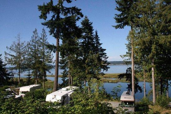 uitzicht picture of living forest oceanside campground. Black Bedroom Furniture Sets. Home Design Ideas