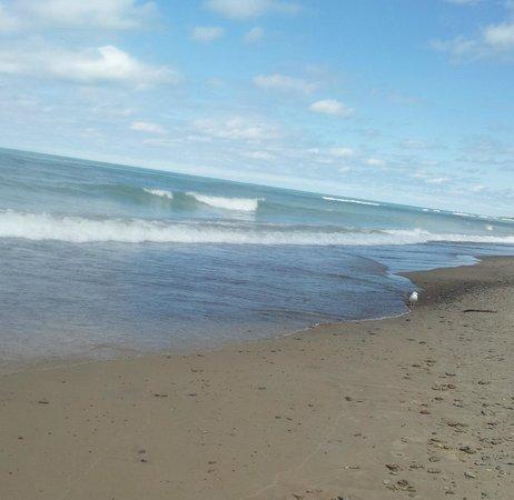 Indiana Dunes National Lakeshore: beach and Lake Michigan