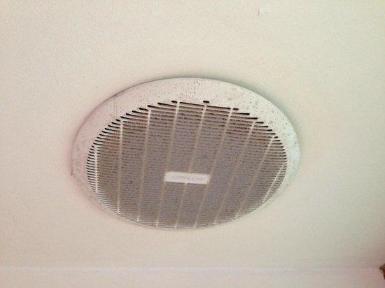 Mango Lodge: Nasty Molding Fan above Shower