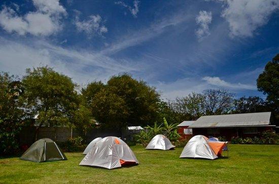 Camping Tipanie Moana : Camping