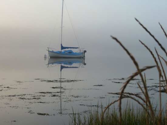 Anchors Gate B&B: Morning mist at Bayside