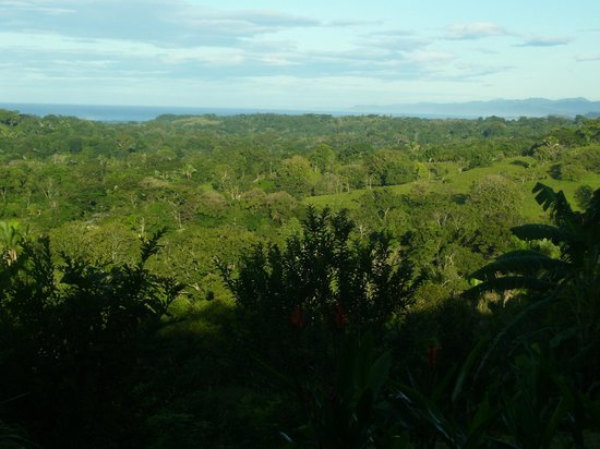 Finca Organica La Palmita: Morning View of Ocean, Mountains, and the Nicoya Coast
