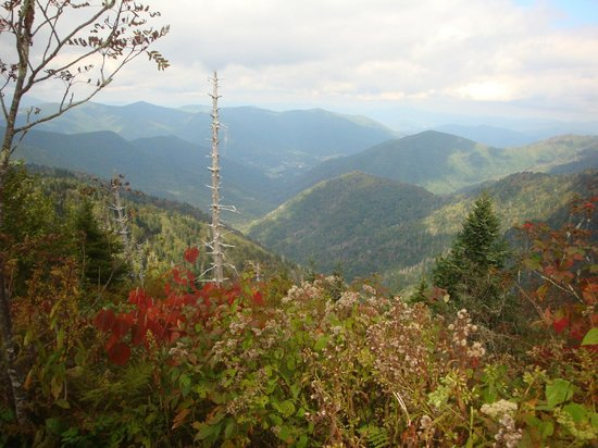 Maggie Valley, NC: View from Waterrock Knob