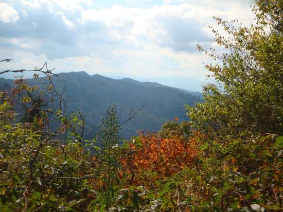Fall Foliage At Waterrock Knob Picture Of Waterrock Knob