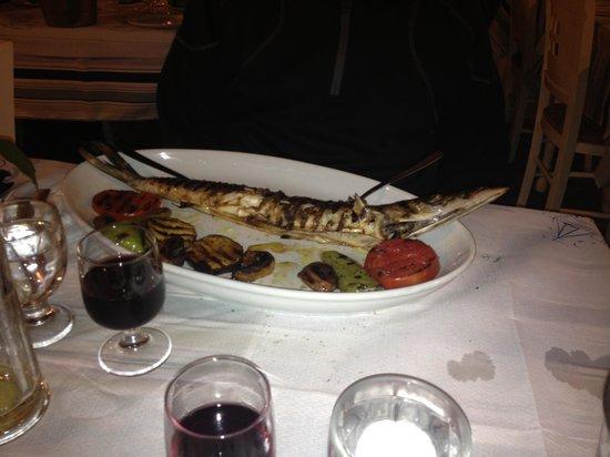 Taverna Rota: Barracuda fish dish !