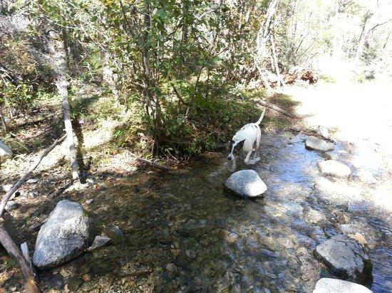 Columbine Trail: Hiking Columbine Creek Trail