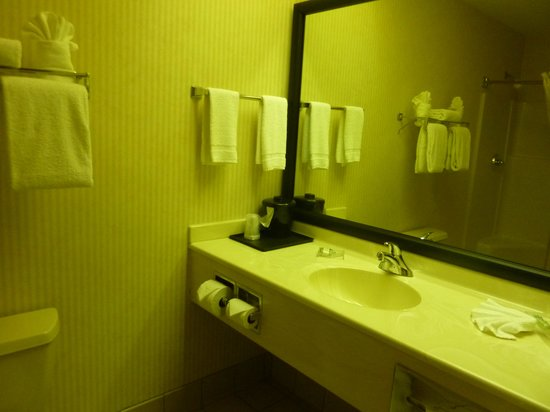 Country Inn & Suites By Carlson, Milwaukee West (Brookfield): large clean bathroom