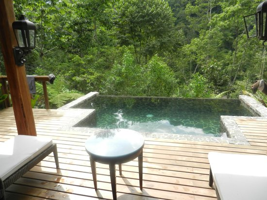 Pacuare Lodge : View of the pool and rainforest off the deck.