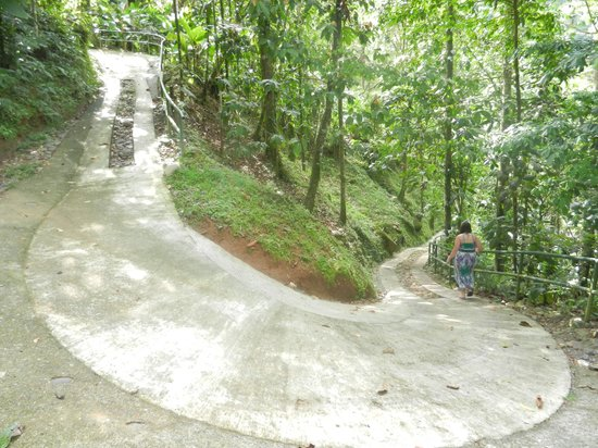 Pacuare Lodge : Part of the walk to the Linda Vista suites