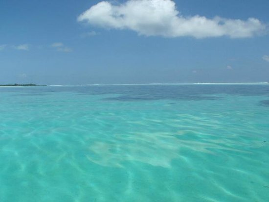 Cokes Beach Maldives : crystal clear water