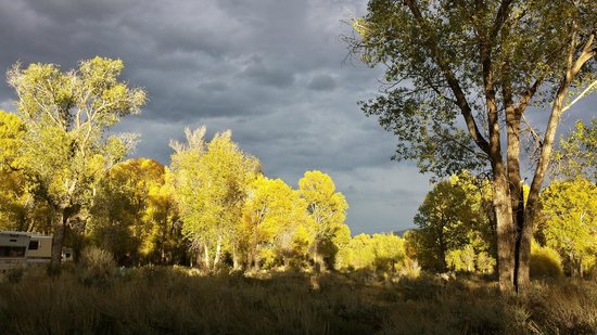 Gros Ventre Campground : View from our campsite.