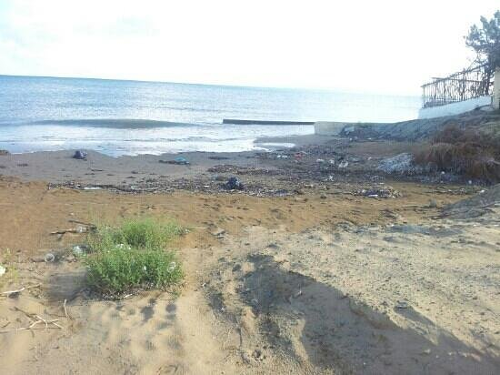Corfu Sea Gardens: beach next to the hotel