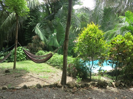 Cuesta Arriba Hotel: hammocks and pool