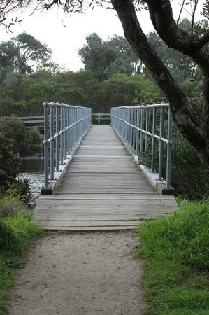 Screw Creek Nature Walk: Approaching the footbridge
