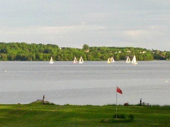 Bayside Motel : Sail boat races