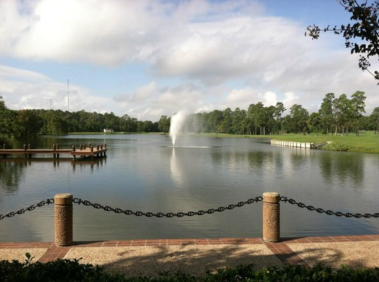 The Woodlands Resort & Conference Center : Fountain