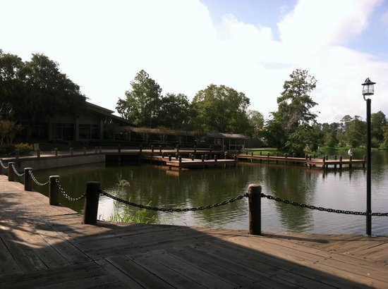 The Woodlands Resort & Conference Center: Water