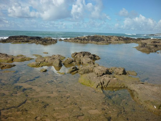 Foto de sauipe resorts costa do sau pe piscinas for Piletas naturales argentina