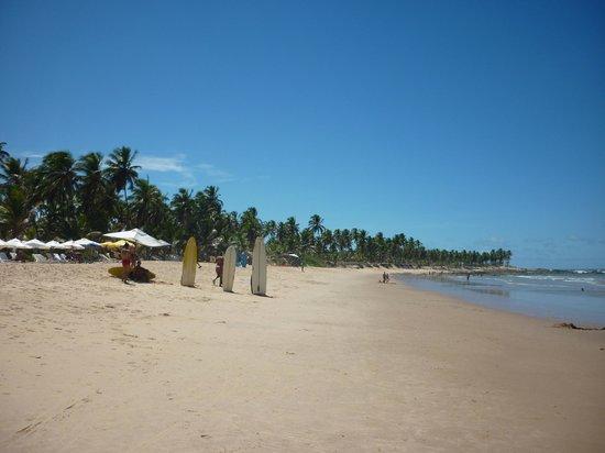 Sauipe Resorts: Playa