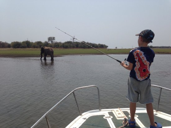 Bumi Hills Safari Lodge & Spa: Fishing with elephant!