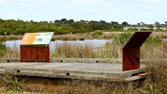 Fisher's Wetland: Viewing platform and information boards