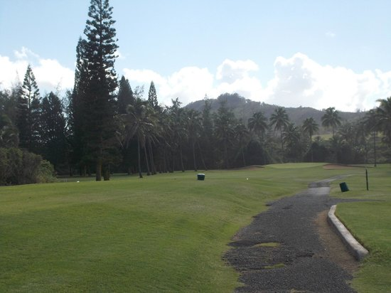 Wailua Golf Course: view on the course