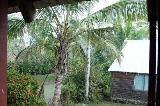 Bulou's Eco-Lodge: View from bure