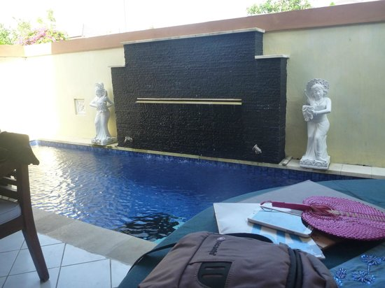 Heliconia Villas: private pool area