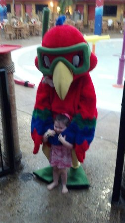 Coco Key Hotel and Water Park Resort : Our Granddaughter with Coco, the Parrot.