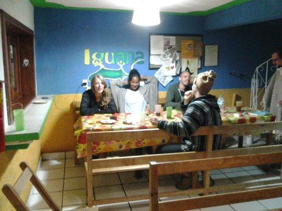 Iguana Hostel: 1