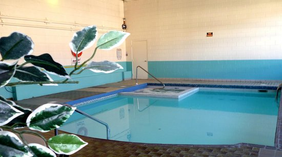 Algonquin Motor Lodge: Heated indoor pool and whirlpool hot tub