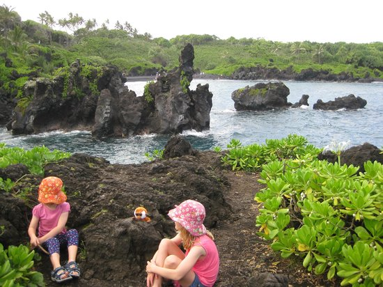 All Maui Private Tours: Lookout near blowhole