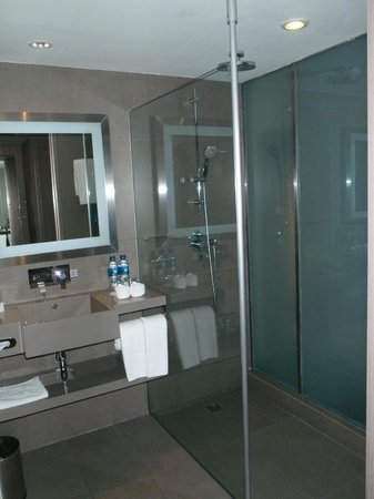 Novotel Bangkok on Siam Square: Bathroom
